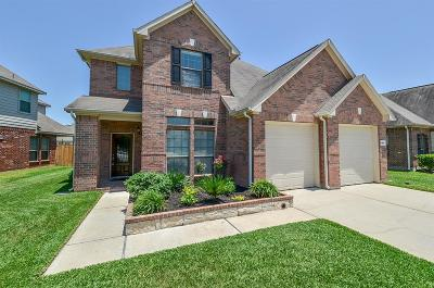 Katy Single Family Home For Sale: 4607 Ferndale Meadows Drive