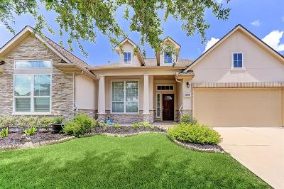 Pearland Single Family Home For Sale: 13305 Barons Cove Lane