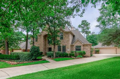 The Woodlands Single Family Home For Sale: 27 Bluff Creek Place