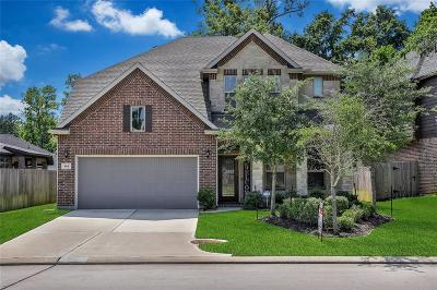 Montgomery Single Family Home For Sale: 164 Capriccio Lane
