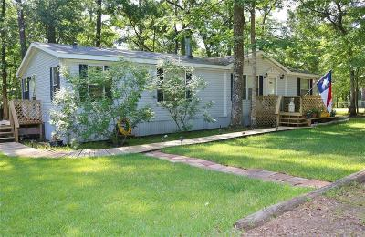 Single Family Home For Sale: 29802 Turriff Circle