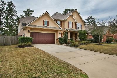 Tomball Single Family Home For Sale: 12027 Rampy Green Drive