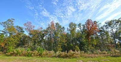 Spring Residential Lots & Land For Sale: 5706 Romulus Court