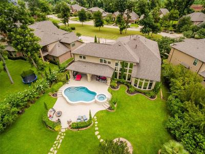 Missouri City Single Family Home For Sale: 18 Spring Bank Circle