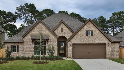 Tomball Single Family Home For Sale: 21438 Rose Loch Lane