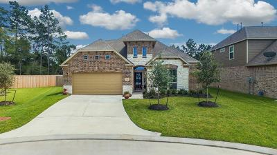 Spring Single Family Home For Sale: 2746 Broad Timbers Drive