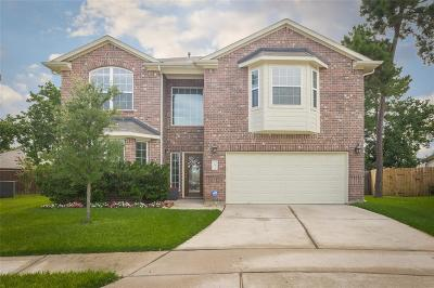 Tomball Single Family Home For Sale: 11930 Ribbon Falls Drive
