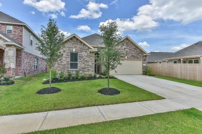 Magnolia Single Family Home For Sale: 3940 Eagle Nest Lake Lane