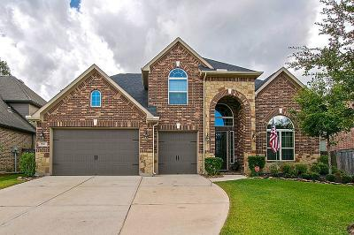 New Caney Single Family Home For Sale: 17011 Ross Lake Court