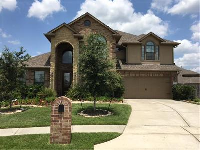 Tomball Single Family Home For Sale: 20811 Noble Crusade Court