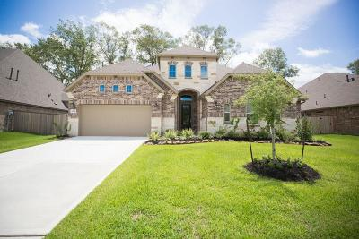 New Caney Single Family Home For Sale: 18851 Collins View Drive