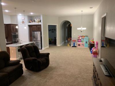 League City Single Family Home For Sale: 723 Mercer Falls Lane