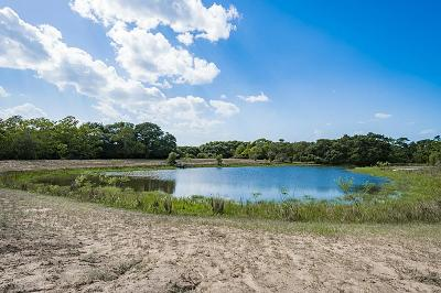 Rock Island TX Farm & Ranch For Sale: $356,880