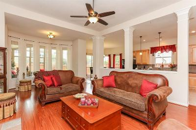 Sugar Land Single Family Home For Sale: 5527 Chesapeake Place