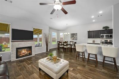 Katy Single Family Home For Sale: 20610 Andorra Hills Lane
