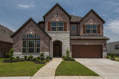 Manvel Single Family Home For Sale: 2519 Deerwood Heights