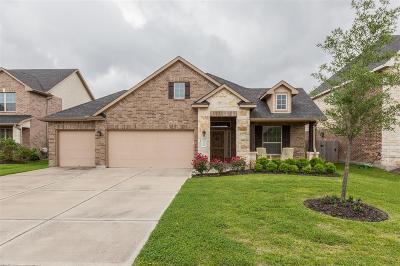 Rosenberg Single Family Home For Sale: 9226 Wheatfield Lane
