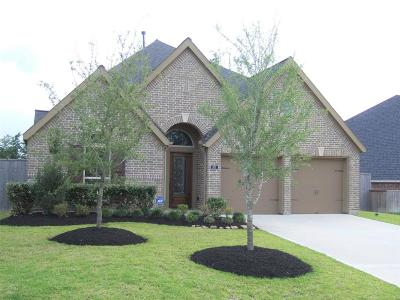 Montgomery Single Family Home For Sale: 107 Pine Crest Circle