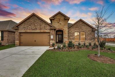 Humble Single Family Home For Sale: 12035 Allington Cove