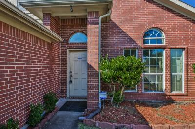 Dickinson Single Family Home For Sale: 205 Silver Mist Circle