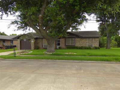 Sugar Land Single Family Home For Sale: 318 Guyer Street