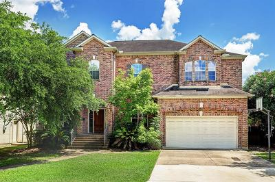 Houston Single Family Home For Sale: 4311 Breakwood Drive