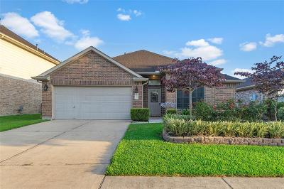 Galveston County, Harris County Single Family Home For Sale: 1051 Cabot Cove