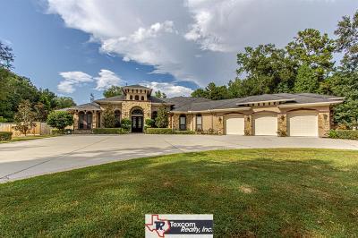 Porter Single Family Home For Sale: 19433 Riverwalk Drive