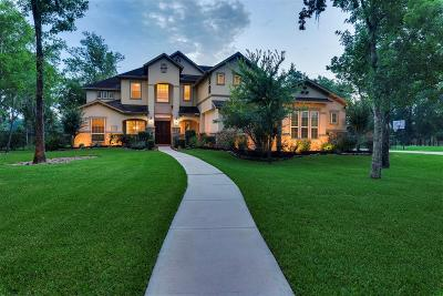 Sienna Plantation Single Family Home For Sale: 20 Big Trail