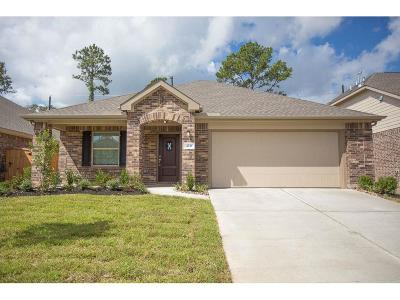 Porter Single Family Home For Sale: 4221 Birch Colony