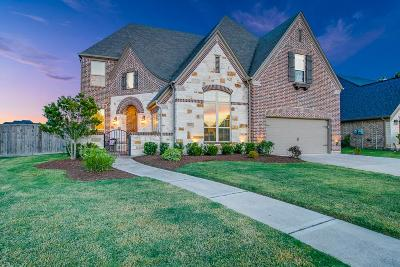 Sugar Land Single Family Home For Sale: 4215 Orchard Arbor Lane
