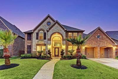 Pearland Single Family Home For Sale: 2414 Copper Sky Drive