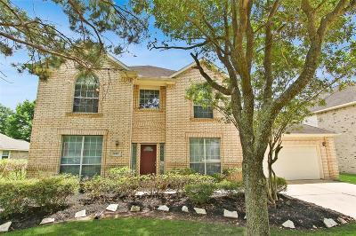Houston Single Family Home For Sale: 16827 Ivy Wild Lane