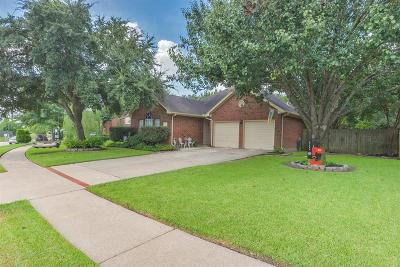 Katy Single Family Home For Sale: 18603 Willow Cove Drive