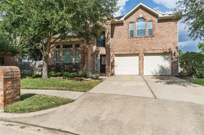 Tomball Single Family Home For Sale: 15818 Maple Falls Court