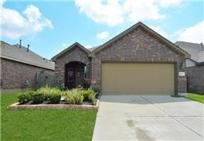 Dickinson, Friendswood Single Family Home For Sale: 6867 Catalpa Bluff Lane