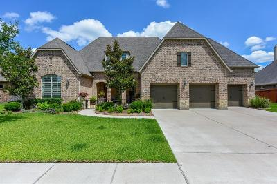 Manvel Single Family Home For Sale: 2518 Apache Plume Lane