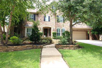 Conroe Single Family Home For Sale: 2100 Summit Mist Drive