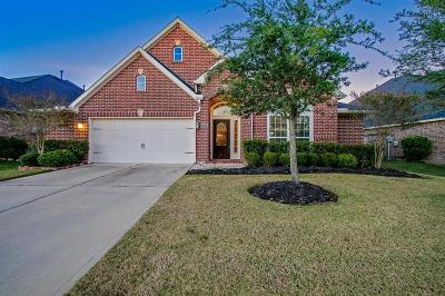 Fulshear Single Family Home For Sale: 27630 Linden Ridge Lane