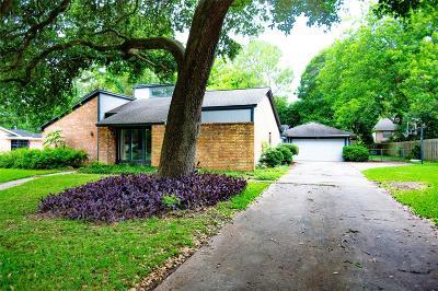 Lake Jackson Single Family Home For Sale: 102 E Flag Drive Drive E