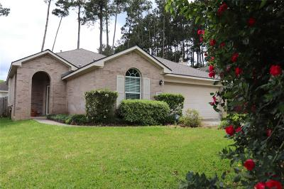 Conroe Single Family Home For Sale: 2225 Valley View Crossing