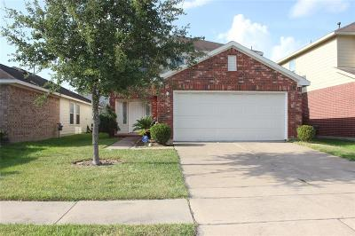 Houston Single Family Home For Sale: 4102 Rosalind Lane