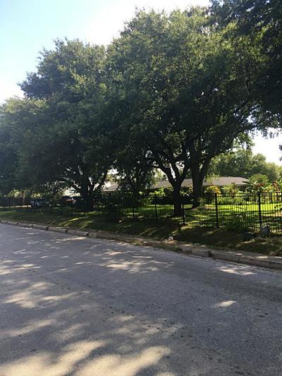 Houston Single Family Home For Sale: 2116 Pech