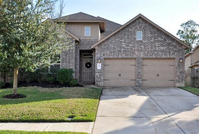 Conroe Single Family Home For Sale: 110 Fields View Court