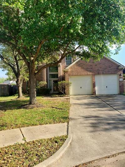 Houston Single Family Home For Sale: 4802 Beaver Pond Circle