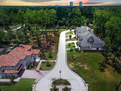 The Woodlands Single Family Home For Sale: 8 Honey Daffodil Place