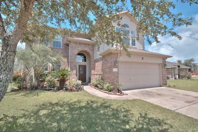 Manvel Single Family Home For Sale: 9 Huntington Bend Drive