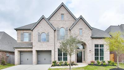 Pearland Single Family Home For Sale: 3430 Golden Cypress Lane