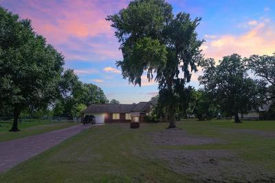Angleton Single Family Home For Sale: 1126 Bar X Trail