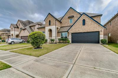 Sugar Land Single Family Home For Sale: 5414 Belle Manor Lane